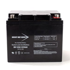 BATTERIE AGM 12V 50 AH INT