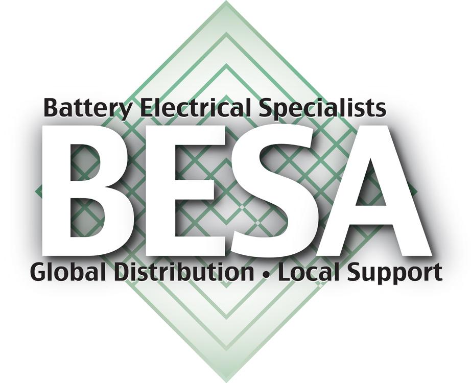 BESA_Logo_Final_2008-12-5